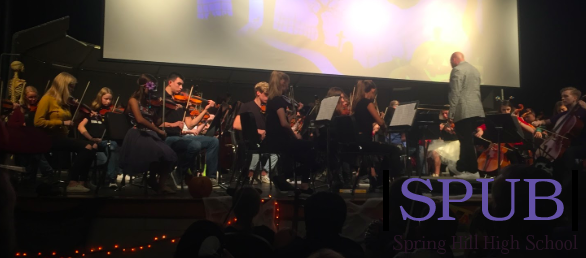 he high school orchestra performing songs from the DIsney movie Frozen during their concert on Oct. 23. It was widely agree apon that the performance went well (Photo by SKuhn).