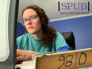 On Dec. 1, Hannah Smith, online learner, 12, works on her daily school work. She says she always tries to always sit at a desk when she works, but sometimes that alone isn't enough to keep her motivated (Photo Illustration by H.Smith).