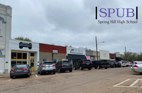 The small businesses of Main Street are popular locations in Spring Hill. While some of them are more adult businesses, there are some that are perfect for teens needs (photo credit T. Dent).